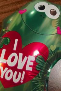 ValentinesNo1021314