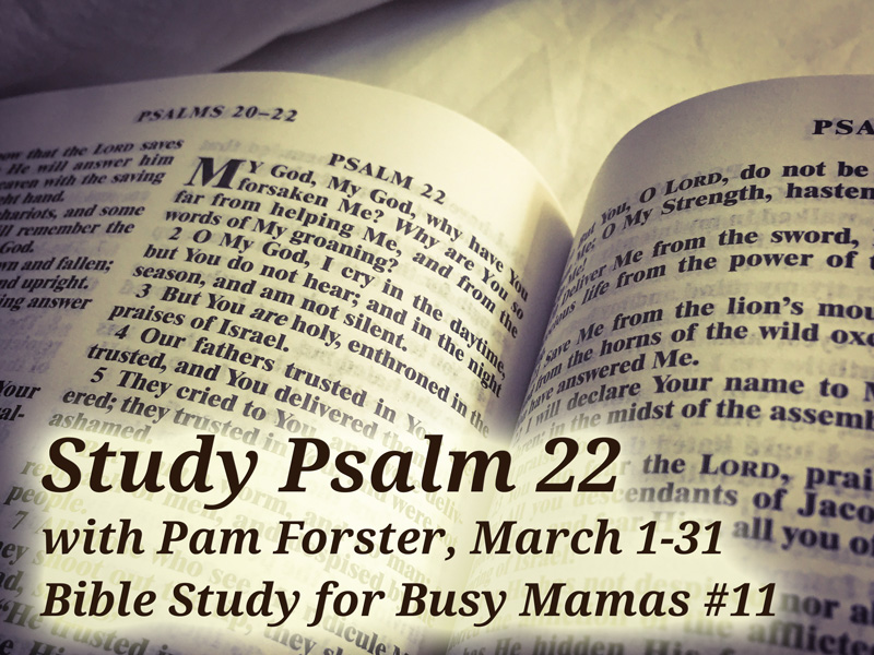 study-psalm-22-busy-mamas-bible-study