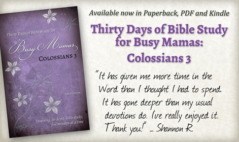 Bible Study for Busy Mamas